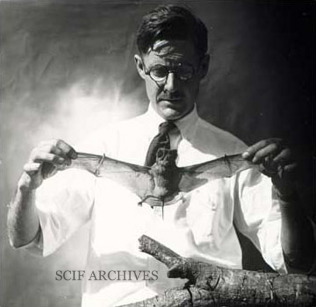 "File:DICKEY, Donald Ryder ""Dick"" 2© (1887-1932).jpg"