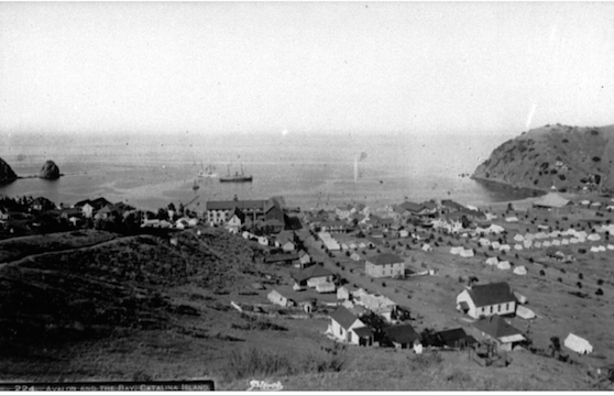 File:Avalon town 1890s.png
