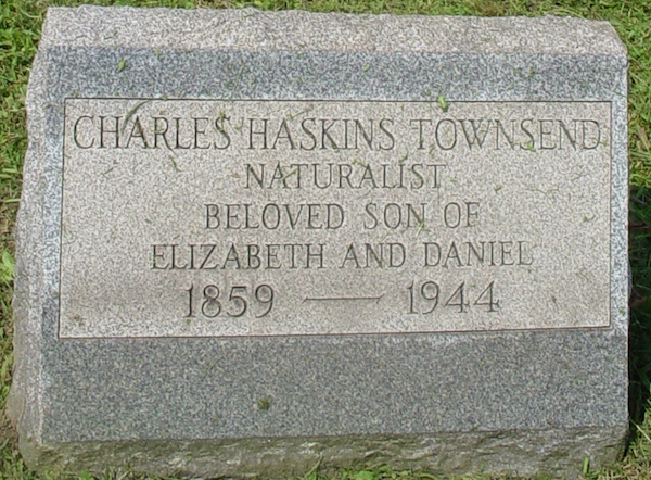 File:C. H. Townsend grave.png