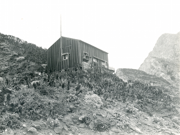 File:West Anacapa NPS 217 CAT 3189.jpg