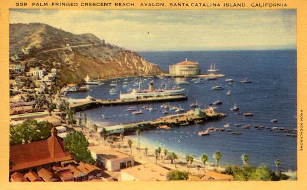 File:559 Palm fringed cresent beach, Avalon, yellow borders copy.jpg