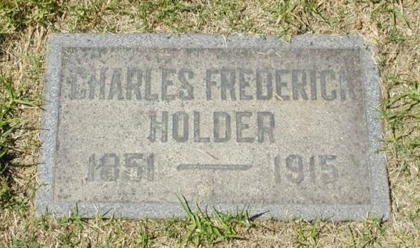 File:CF Holder.png