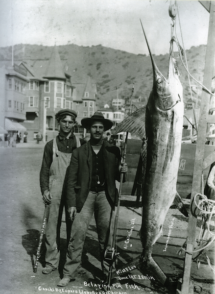 File:Tuna Club His. - E.B. LLewellyn.jpg