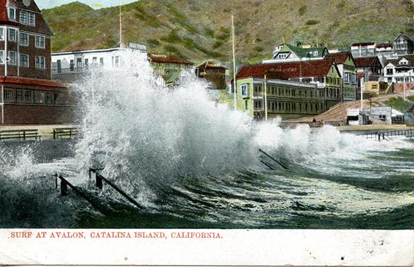 File:2301 Wood's Inc. Surf at Avalon.jpg