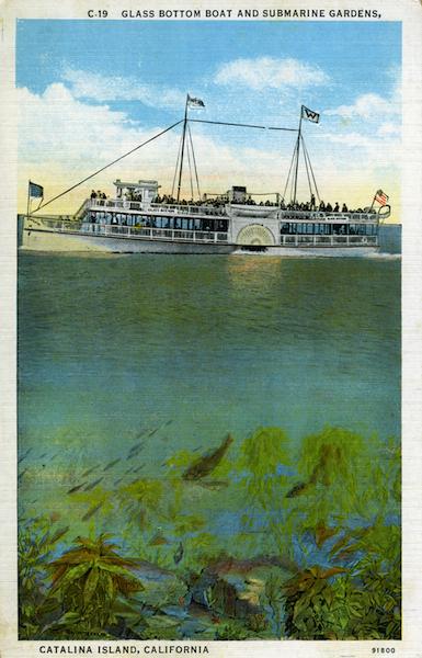 File:Glass bottom boat and submarine gardens .jpg