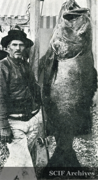 File:Mexican Joe and Black Bass©.jpg