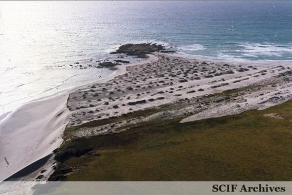 File:SRI China Camp Sand Dunes.jpg