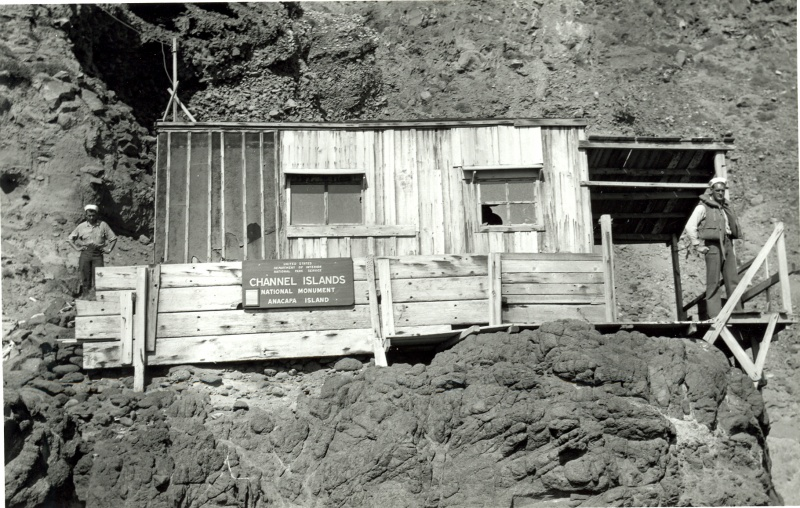 File:West Anacapa NPS 217 CAT 3212.jpg