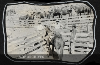 SCLI Summerfield South side of San Clemente Men in horse corral.jpg