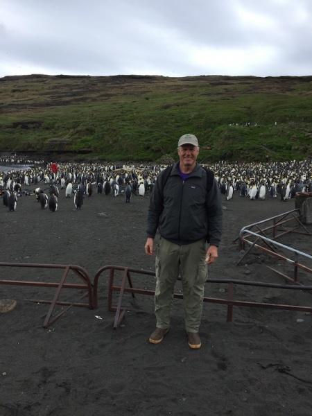 File:Kirk penguins.jpeg
