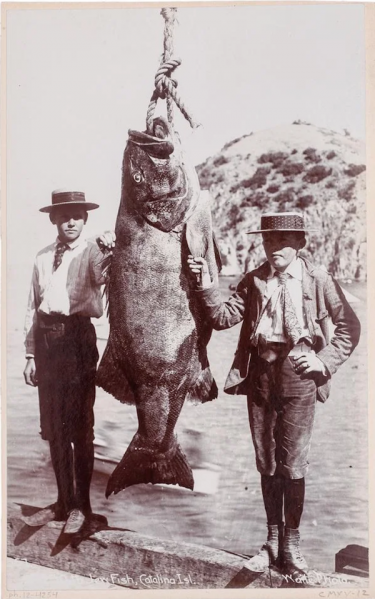 File:Boys and bass.png