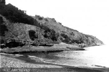 WODawson SCRI 1919 006.jpg
