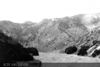 WODawson SCRI 1919 004.jpg