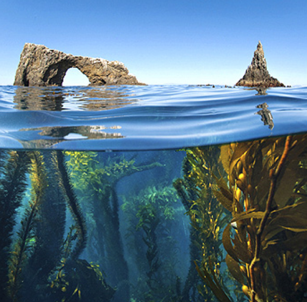 File:Arch Rock.png