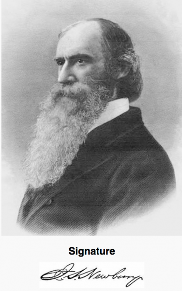 File:Newberry.png