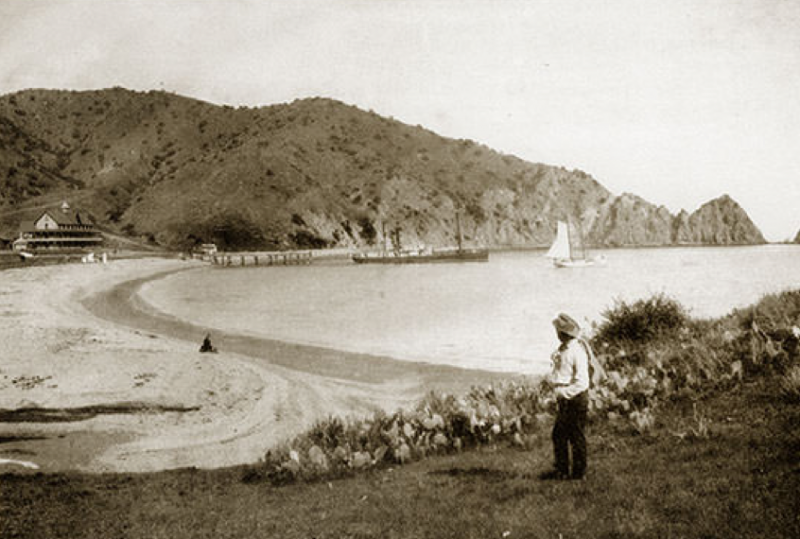 File:1888 Avalon Bay.png