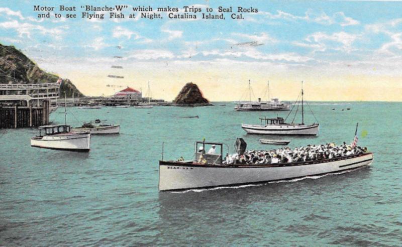 File:Vessel Blanche W.jpg