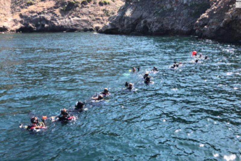 File:Divers.png