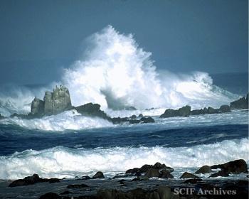 Richard Hegeman Sand & Sea 031.jpg